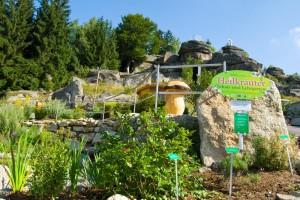Kräutergarten 2010 (3) (Kopie)